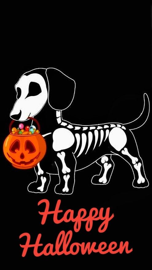 Pin By Sherry Bass On Halloween Halloween Drawings Halloween Wallpaper Halloween Orange
