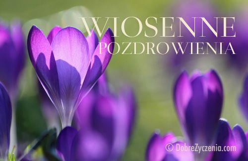 Wiosenne Pozdrowienia Zyczenia Na Pierwszy Dzien Wiosny