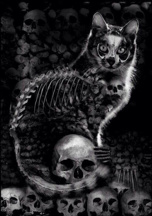 Cats, Gothic and Gothic art on Pinterest