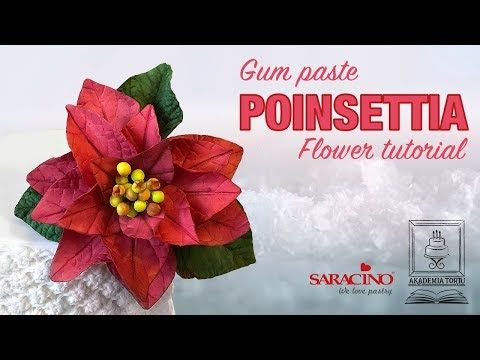 Sugar Poinsettia Flower Tutorial Using The New Flower Paste By Saracino Quick And Easy A Perfect Holiday Cake Sugar Paste Flowers Flower Tutorial Poinsettia