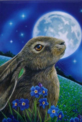 Moongazing Hare by Lisa Parker