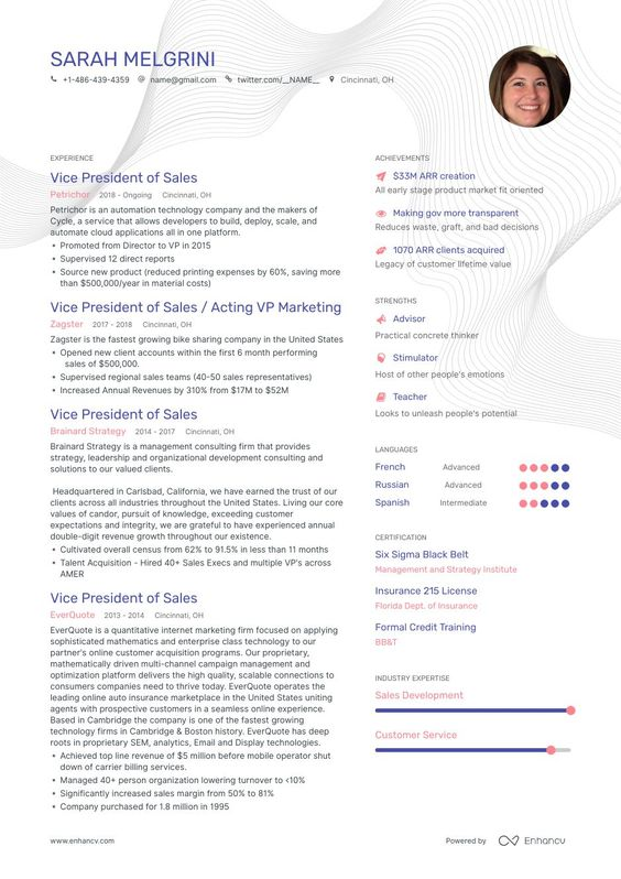 Vp Of Sales Resume Ultimate Writing Guide For 2020 Marketing Resume Sales Resume Resume Examples