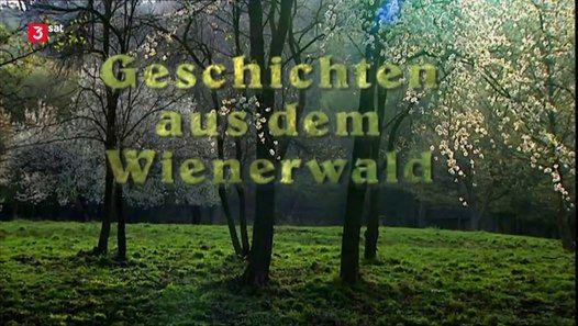 Wien Ist Die Einzige Weltstadt Die Mit Dem Wienerwald Uber Ein Riesiges Geschlossenes Waldgebiet In Unmittelbarer Stadtnahe Verfug In 2020 Neonschild Wien Geschichten
