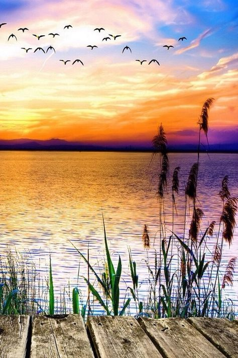 """""""Sunset Lake"""", by Robert D'Costa. (for inspiration) Love this richly-colored scene"""