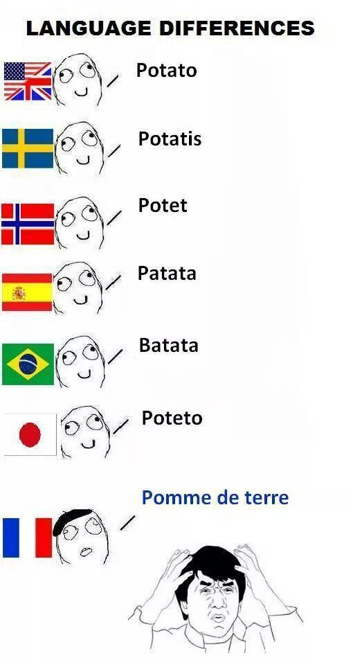 Ok I Admit There S Some Crazy Shit In The French Language Pintgirl Language Jokes New Funny Memes Language