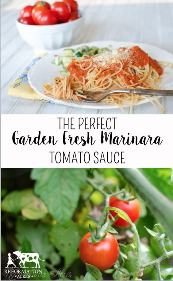 Easy Garden Tomato Sauce Recipe — Dishmaps