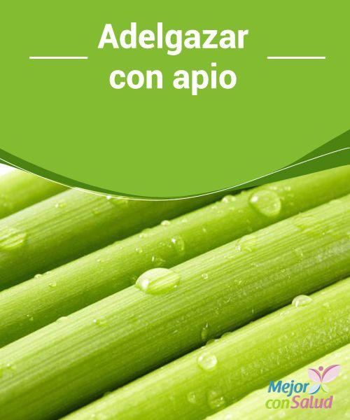 Adelgazar con apio  El apio es un vegetal tan beneficioso como polivalente. Lo podemos combinar con multitud de platos y prepararlo de diversos modos, ofreciéndonos unas virtudes sencillamente maravillosas: