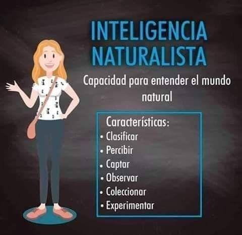Inteligencia Naturalista Educacion Emocional Educacion Infantil Las Emociones Para Niños