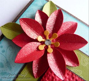Poinsettia, Punch and Star flower on Pinterest