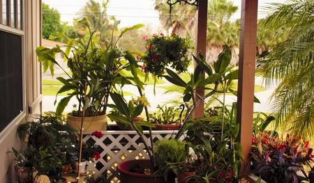 Front Porch Photo by Liliana Campozano-Arias — National Geographic Your Shot