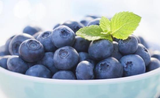 15 فائدة تحصلين عليها من تناول التوت البري Blueberry Fruit Food