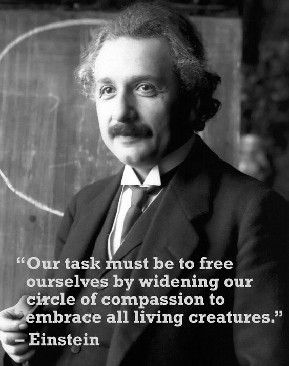 Einstein definitely had the right idea. Get inspired--teach students to have compassion for ALL beings through humane education: www.TeachKind.org. #TeachKindness #TeachEmpathy #TeachCompassion: