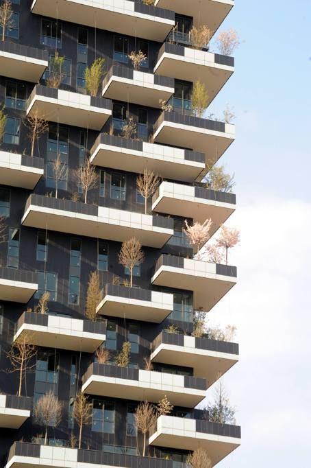 bosco verticale. Milano 2014:
