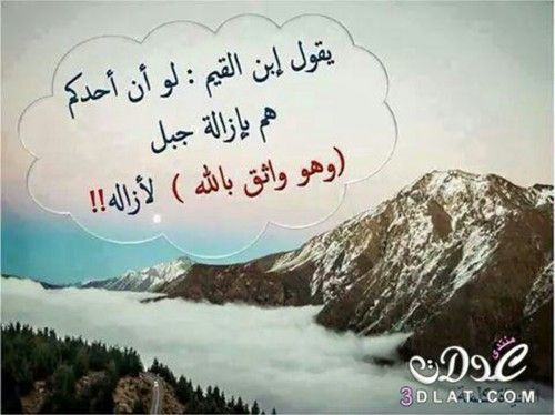 صور عن الهمة 5 Prell Novelty Sign Arabic Quotes