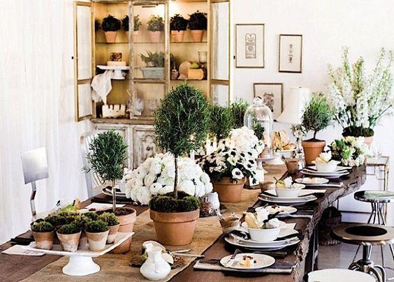 Mesa com plantas simples mas cheias de graça!