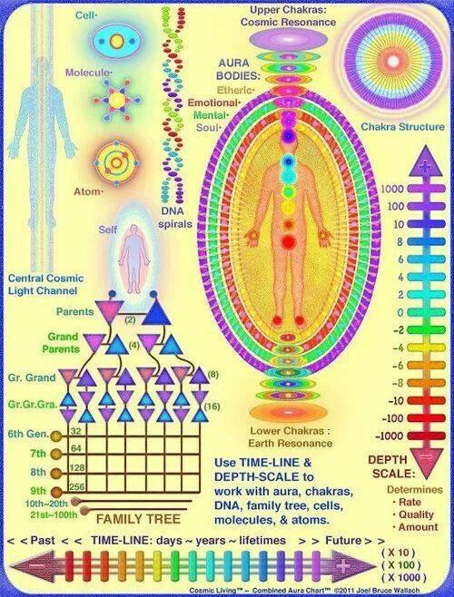 Our Chakras: