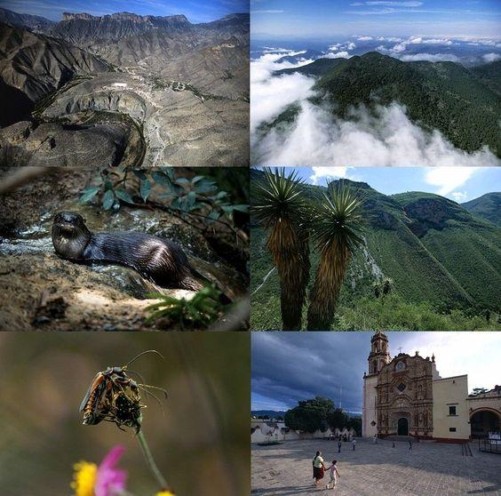 Los atractivos de la Sierra gorda de Querétaro.