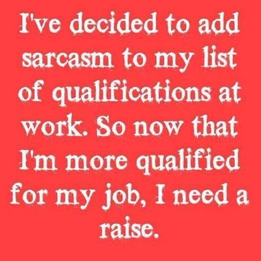 Iu0027ve decided to add sarcasm to my list of qualifications at work - job qualifications list