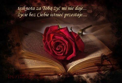 Tesknota Za Toba Zyc Mi Nie Daje Rose Calaveras Art Red Roses