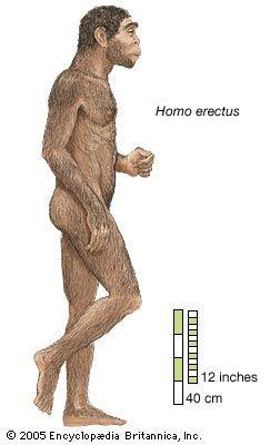 moden homo eskorte oslo
