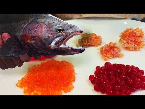 Easy Simple Egg Curing For Salmon Steelhead Bait Catching Fishing On Easy Eggs Steelhead Salmon