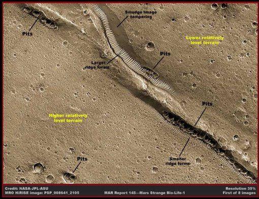 Agua, vida y civilizaciones en Marte Af8b1685abc86270da087b4a003b0daf