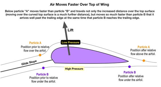 Understanding air flow over a wing,affecting lift of an aircraft or bird wing. #VisualVocabulary