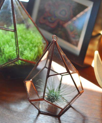Cool Terrariums: Hanging Terrarium, Teardrop Terrarium, Hanging Glass Planter, Air Plants Terrarium, Hanging Teardrop, Air Plant Terrarium