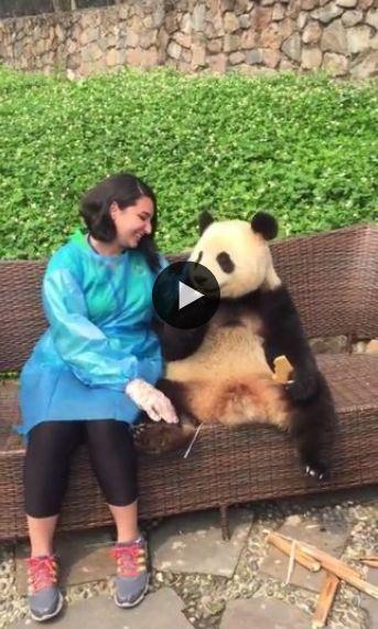 brincando com o urso e se divertindo com a natureza