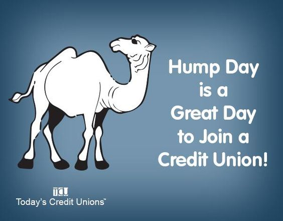 Nice Ad for Hump Day. Is that a real thing?