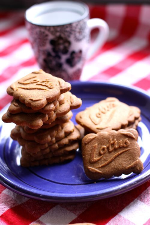 When I'm craving graham crackers in France, my replacement is Speculoos. Have you tried them?