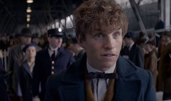 On Newt Scamander, Toxic Masculinity, & The Power Of Hufflepuff Heroes