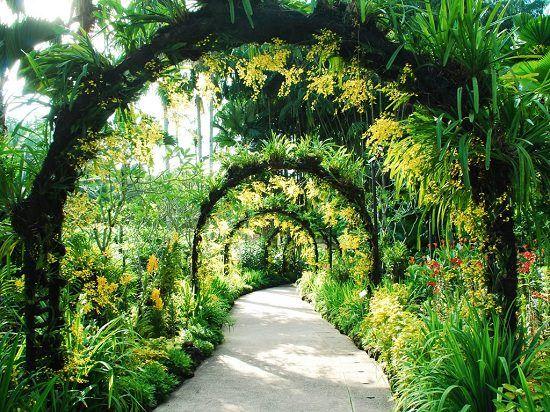 afa2d86c98ba3a6d22b2d71ca86d32fa - What's Happening At The Botanical Gardens