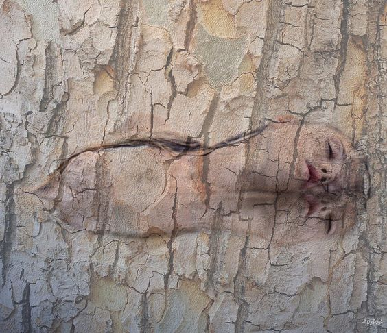 ~Tree Spirits~ by THROUGH_HAWAIIAN_EYES