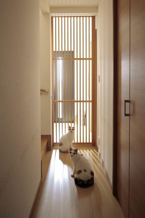 戸建てリノベ事例 猫9匹の安全と快適さを 縦格子の引き戸 によって実現した家 Sumai 日刊住まい 家 引き戸 インテリア