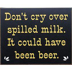 Do not cry over spilt milk essay