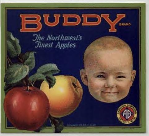 Buddy brand