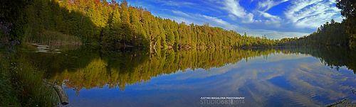 Crawford Lake - Fall 2013