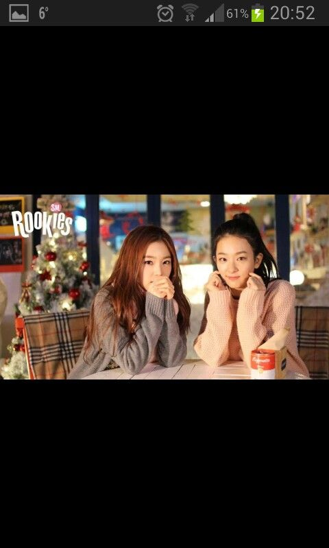 Irene and Seul Gi SMROOKIES