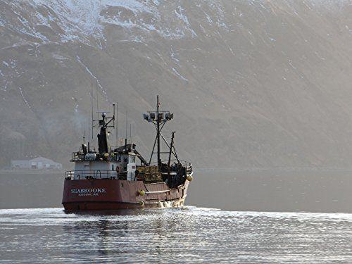 Fang Des Lebens Der Gefa Hrlichste Job Alaskas Staffel 7 Lebens Der Fang Des Der Gefahrlichste Job Alaskas Alaska Job