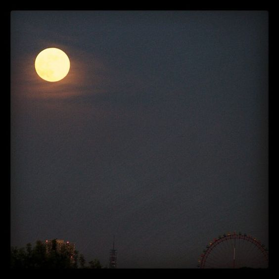 Moon - @nutnosuke- #webstagram