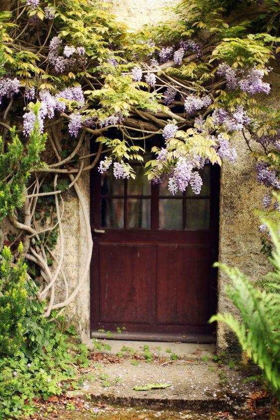 Vasterival normandy l 39 un des plus beaux jardins normands for Jardins romantiques francais
