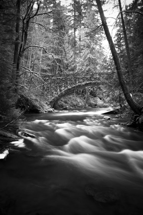 Black and white photograph of a bridge over a creek in the woods.