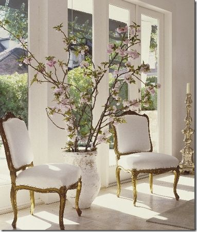 Flowering branches, beautiful