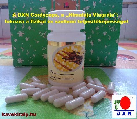A DXN Cordyceps kapszula elmaradhatatlan része napjaimnak - Takács Gergely, DXN, kávékirály.hu