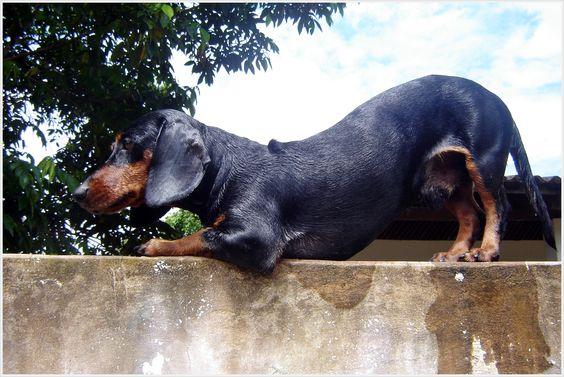 Epitaciolândia, 2006
