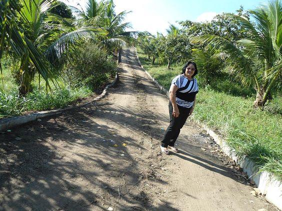Viva com intensidade supere os obstáculos que vão surgindo a sua frente. As pedras estão no nosso caminho, mas que apesar delas, o sol continua brilhando, mesmo depois de dias chuvoso. Que possamos crescer e não simplesmente envelhecer. Profª Lourdes Duarte http://pensador.uol.com.br/autor/prof_lourdes_duarte/ http://filosofandonavidaproflourdes.blogspot.com.br/ http://professoralourdesduarte.blogspot.com.br/