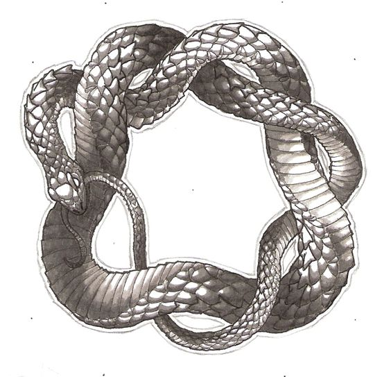 Pinterest the world s catalog of ideas for Snake eating itself tattoo