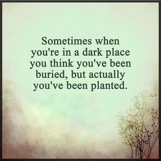 Sometimes when you're in a dark place, you think you've been buried, but actually you've been planted.: