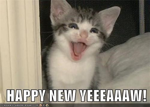 HAPPY NEW YEEEEAAAWW !  For more fun holiday cats, visit https://www.facebook.com/funholidaycats